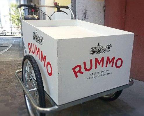 cargo-bike TrikeGo