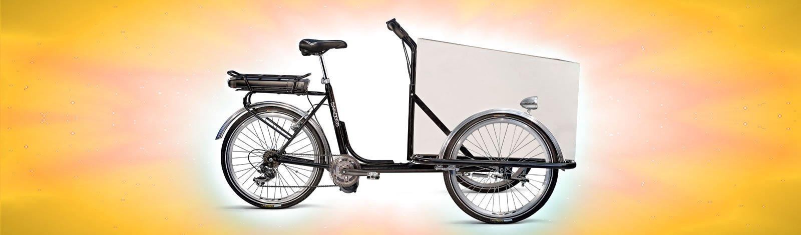 TrikeGo Cargobike- FATTA IN ITALIA