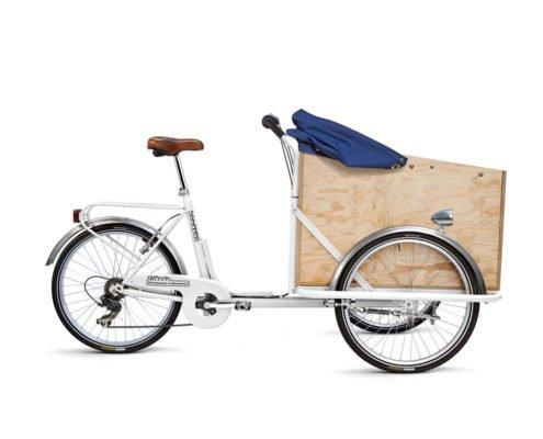 Cargo Bike per Trasporto Persone con Cappottina