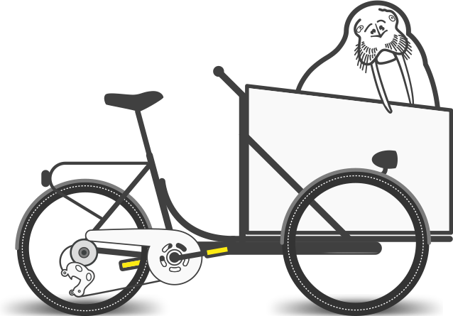 Bici trasporto disabili