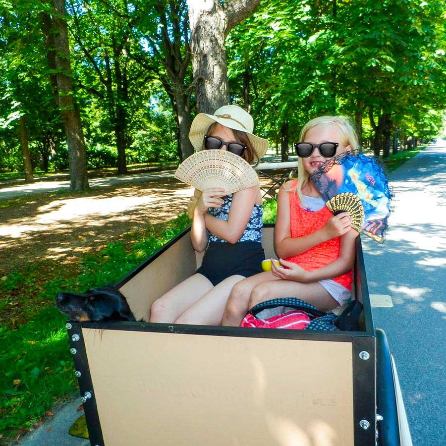 Cargo Bike TrikeGo Bambine Cane Sole Kinder Kutsche Austria