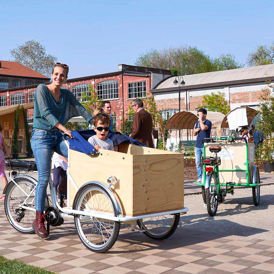 Cargo Bike TrikeGo Facile
