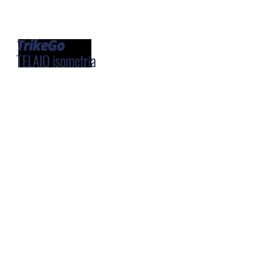Cargo Bike TrikeGo ISO con Testo