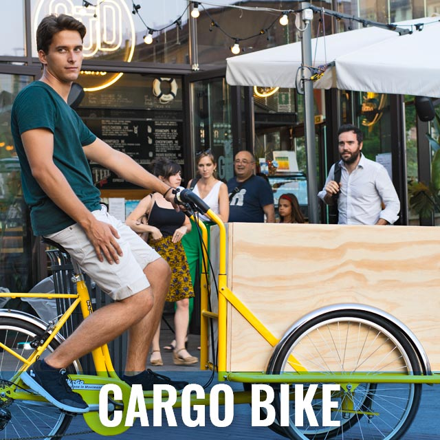 Cargo Bike TrikeGo PULSANTE CARGO BIKE