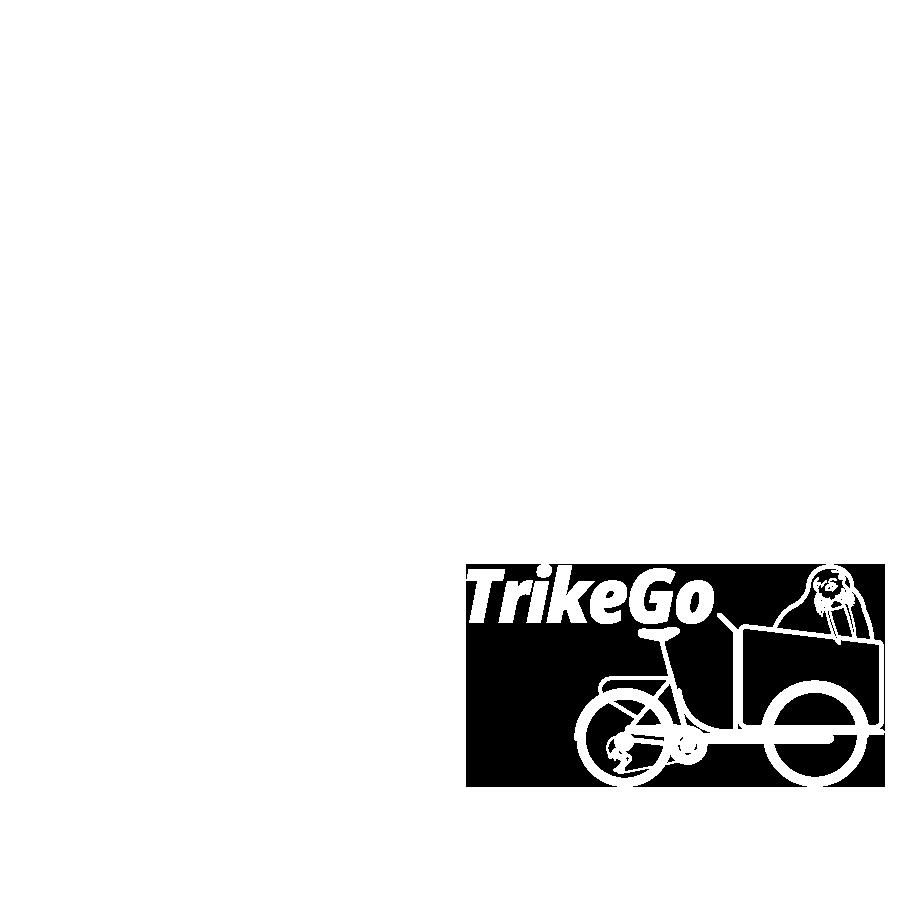 Cargo Bike TrikeGo Proiezioni Ortogonali
