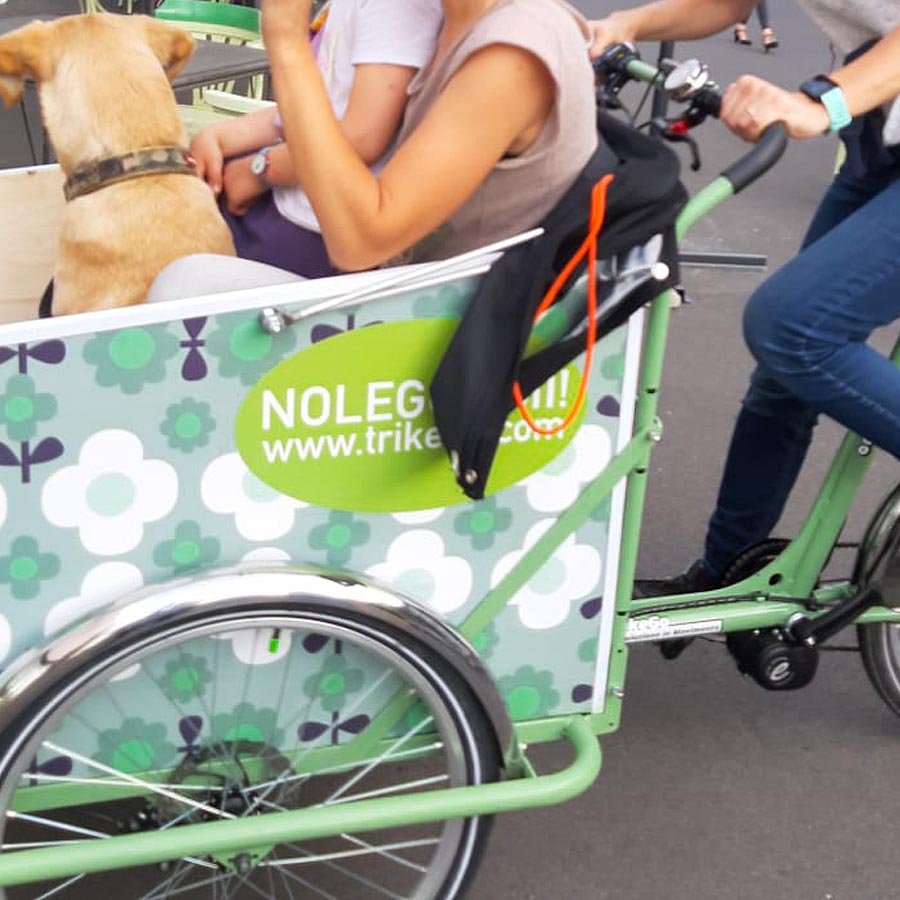 Cargo Bike TrikeGo Noleggio